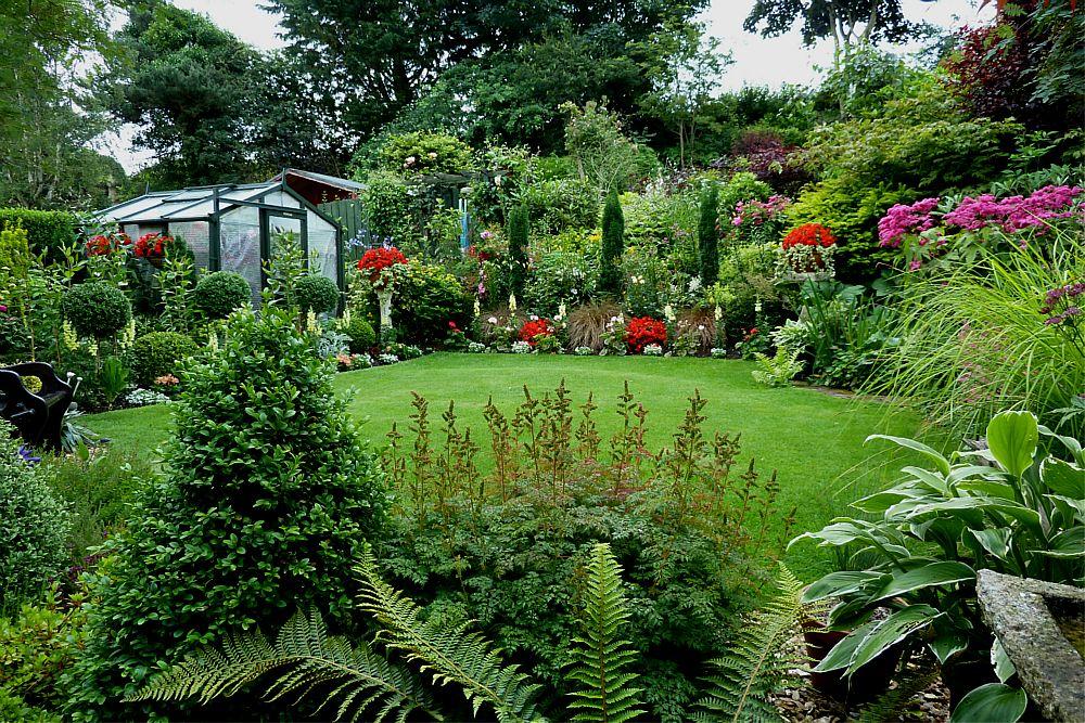 Back garden August 6th  (2)