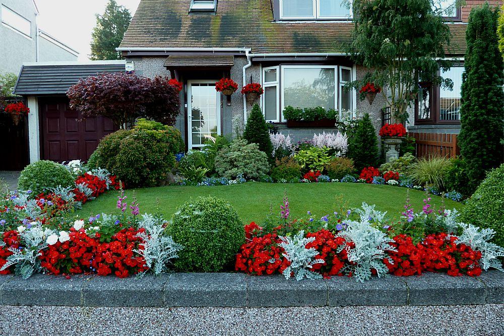 Front garden August 5th  (9)