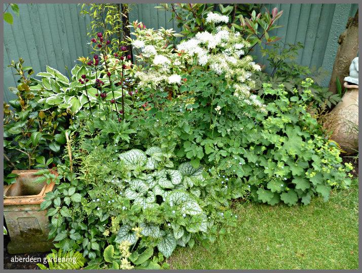 garden corners (2)
