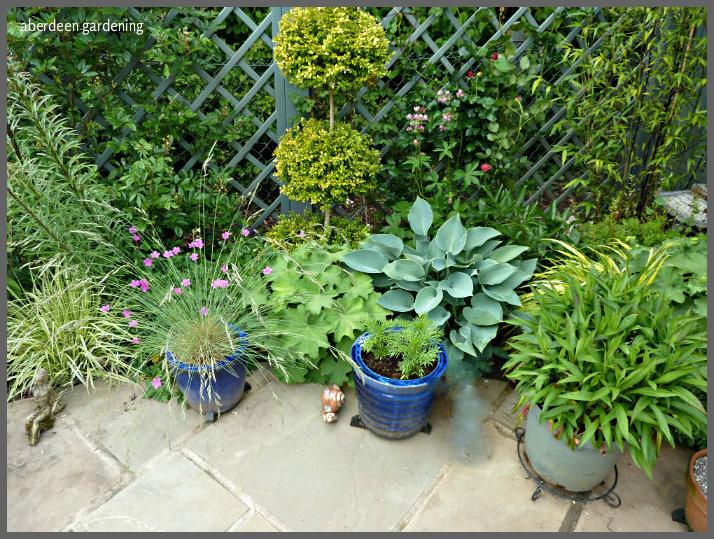 garden corners