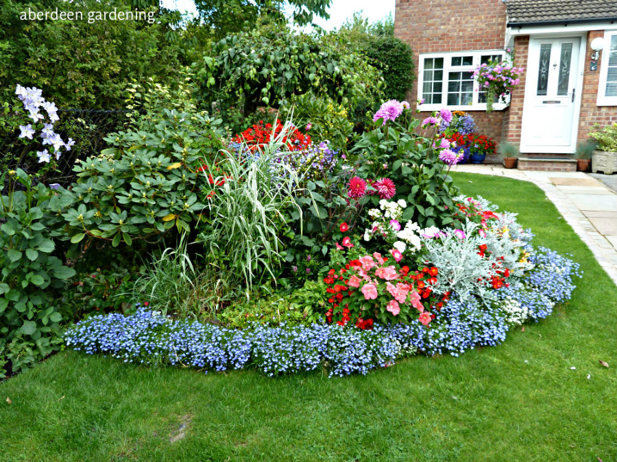 Front garden (5)