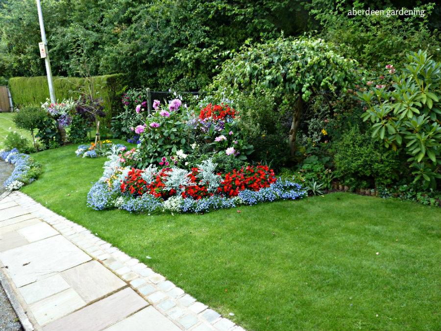 Front garden (9)
