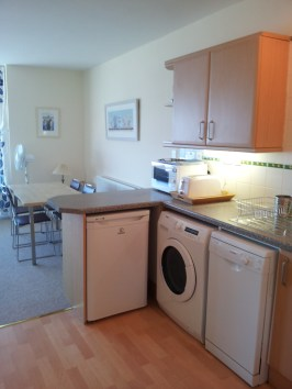 Kitchen showing washing machine, dryer, fridge, dishwasher and microwave.