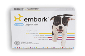 Embark-DNA101