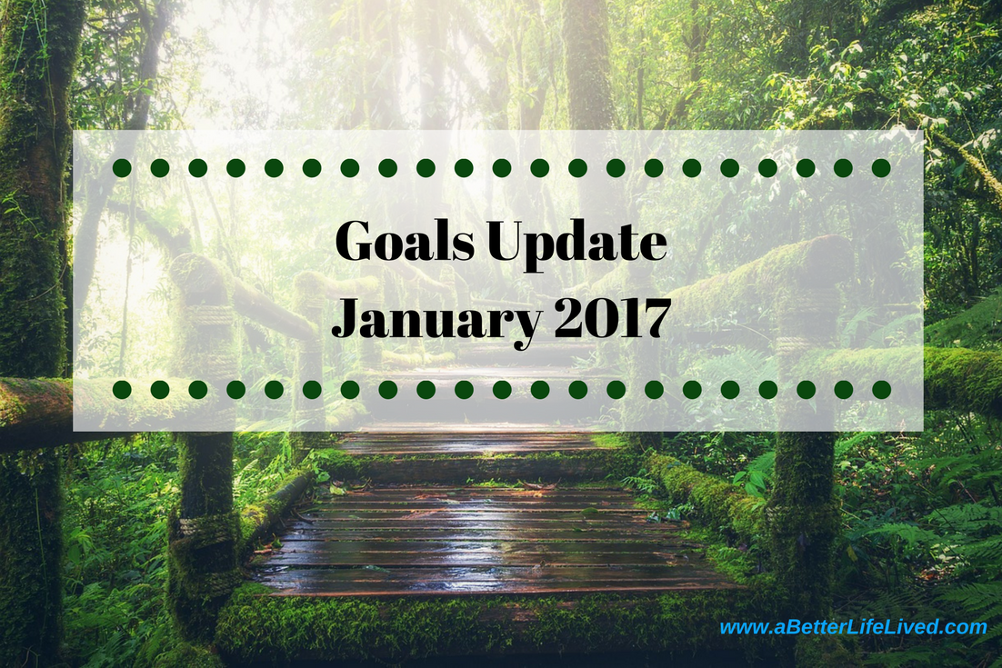 Second monthly goals update. See how I've done on my weight loss and financial goals!