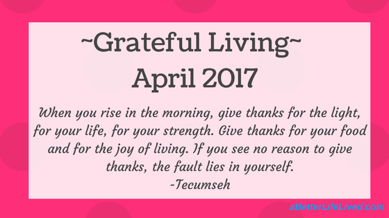 Take a moment to be grateful and appreciate the little things in life. Realize that those little things are the big things.