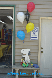 Snoopy Birthday Party Decorations