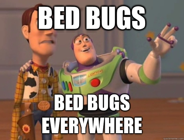 bugs7 dubai vs bed bugs fight! abez sez assalamualaikum!