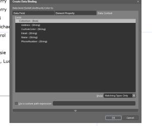 Expression Blend 4 : Data Binding Background