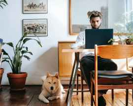 pensive black man using laptop while akita inu resting on floor