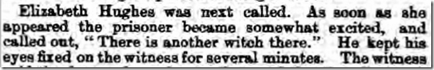 Worcestershire_Journal_18_December_1875_1