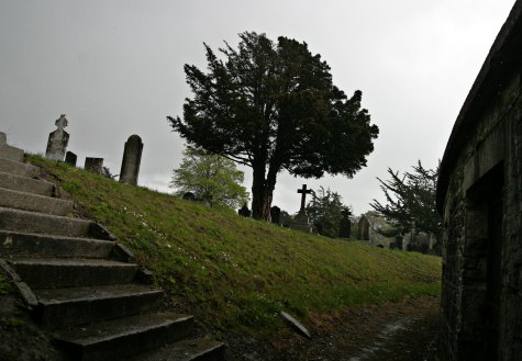 A suitably blasted heath - or rainy cemetary