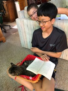boys and cat in basket