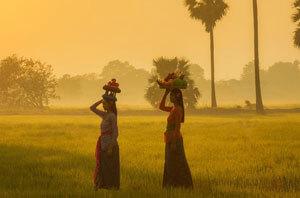Les avantages du tourisme vert pour l'environnement