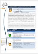 Rapport d'audit PSA