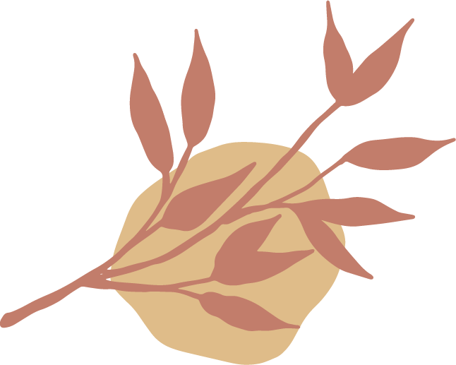 Abisinia-Review-Editorial-Servicios-Ícono-Decoración-Servicios@2x
