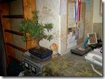 потолок и дерево денег. 014