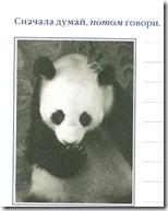 панда. бамбуковый медведь.