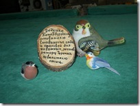 кяргула. райский уголок для птиц. 005