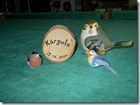 кяргула. райский уголок для птиц. 006