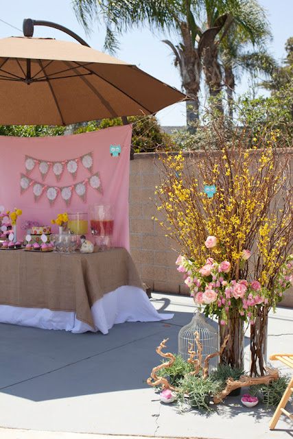 BN Black Book Of Parties Pink Woodland Owl Baby Shower