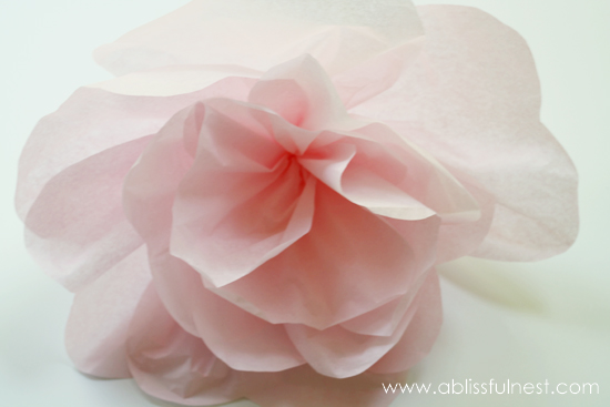 Tissue Paper Flower Tutorial by A Blissful Nest