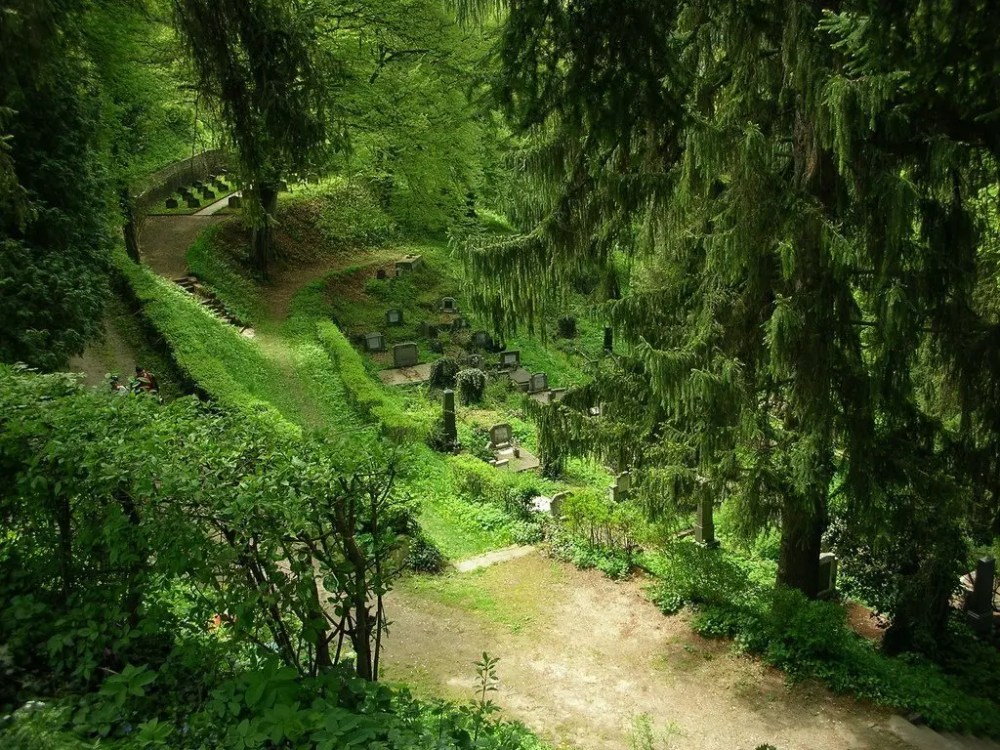 139648494_d0fef35fdb_b Sighisoara - Romania Romania Sighisoara  Transilvania Sighisoara Romania Proetnica Festivals