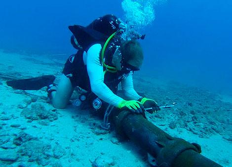 Undersea cable
