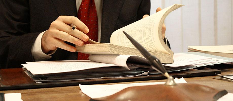 Abogados en derecho constitucional