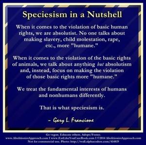 SpeciesisminaNutshell
