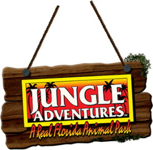jungle adventures