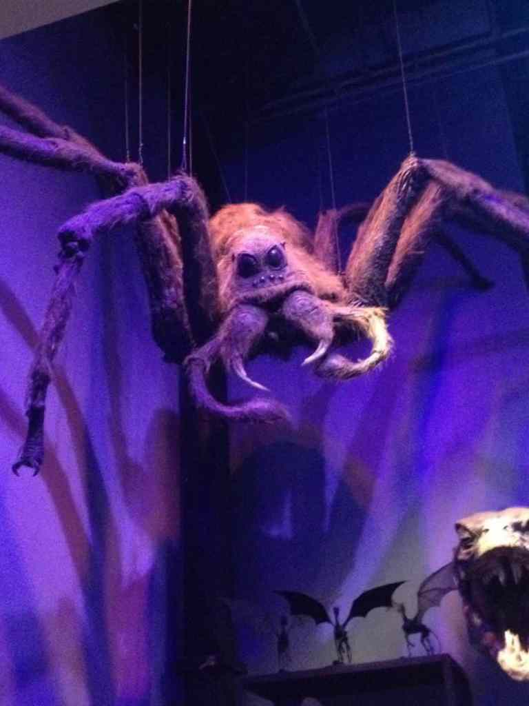 Aragog in the creature department on the Warner Bros Tour