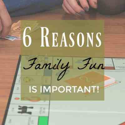 6 Reasons it's Important to Have Family Fun