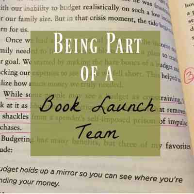 My Book Launch Team Adventure ~ More Than Just Making It
