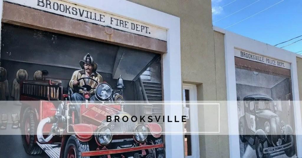 mural on wall in Brooksville FL