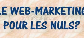 le-web_marketing-pour-les-nuls-Communication-Digitale