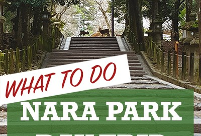 To do on Day Trip to Nara Park