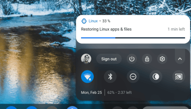 Chrome OS Files app now shows Android files  Here's how to