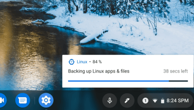 Here's what Linux backup and restore for Chromebooks looks