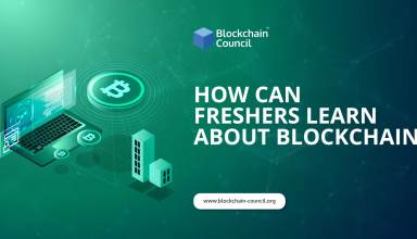 HOW-CAN-FRESHERS-LEARN-ABOUT-BLOCKCHAIN
