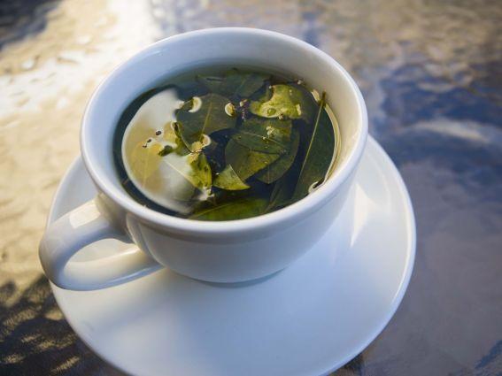 Infusión o té de coca. ¿Beneficioso o tóxico?