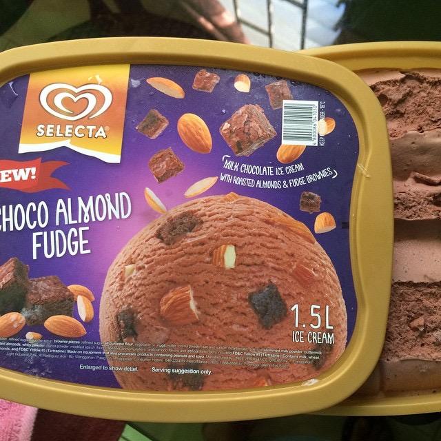 Selecta Ice-Cream: Choco Almond Fudge