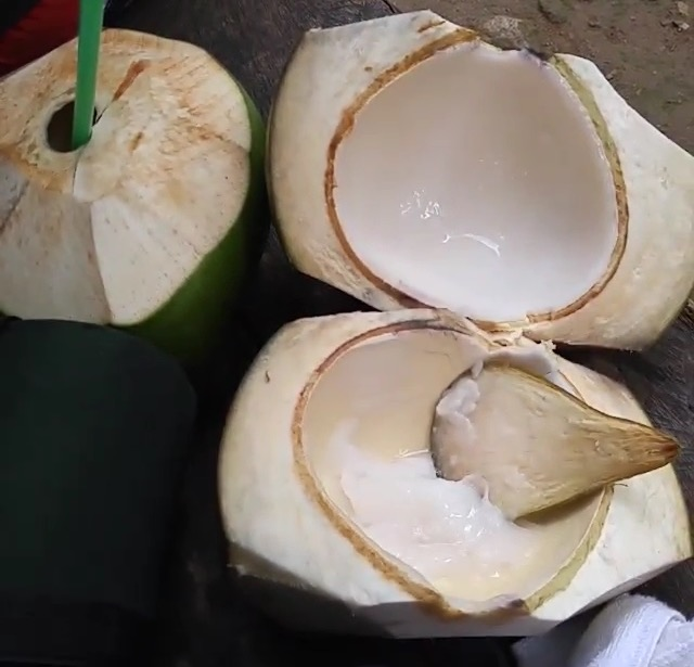 Buko: Young Coconuts in the Philippines