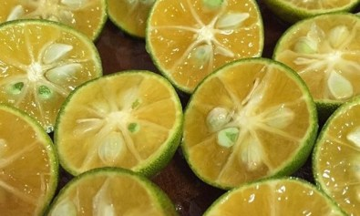 Calamansi Fruits Sliced into Halves