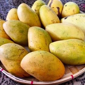 Filipino Mangoes