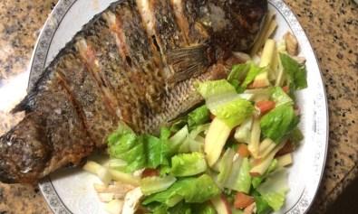 Pla-Pla: Big Tilapia Fish