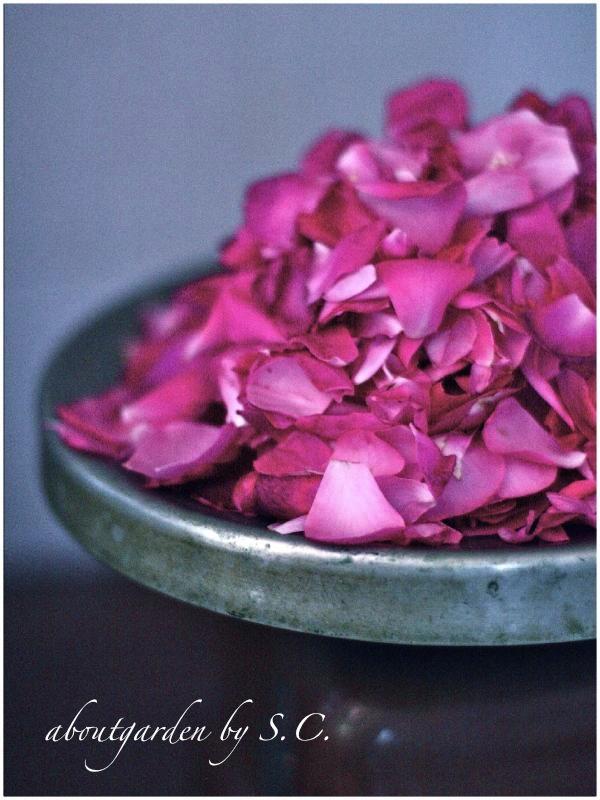 petali di rosa da sciroppo
