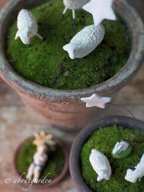 pot-presepe aboutgarden