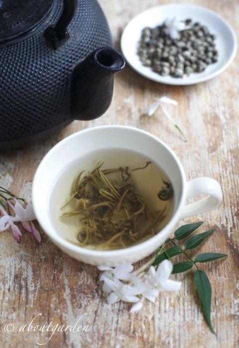 Jasminea tea cup