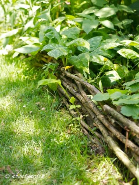 cordolo giardino Medievale